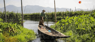 Shan-State-Lawmakers-to-Discuss-Draft-Inle-Lake-Conservation-Law