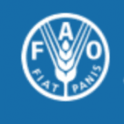 Food and Agricultural Organization of United Nations (FAO)